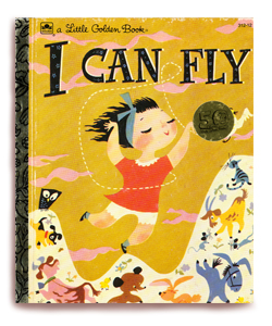ican-fly-back-camilli2.jpg